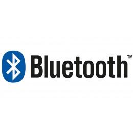 Bluetooth Soundsystem für Whirlpool Badewanne